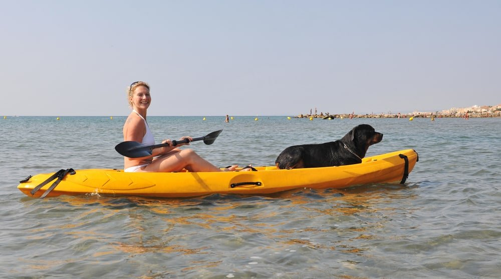 Best Kayak For Dogs 2019 Top Rated Dog Friendly Kayaks